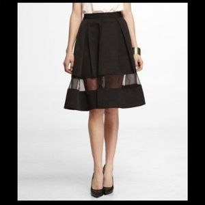 Express Swing Skirt with Sheer Panel